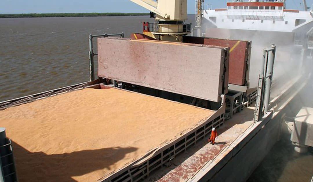 Por la caída de los precios internacionales, aseguran que los ingresos de las exportaciones agroindustriales cayeron más de 1.600 millones de dólares en un mes
