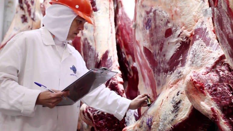Argentina perdería US$ 1.100 millones por las restricciones a la exportación de carne
