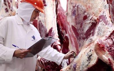 Tres gobernadores piden que se abra el cepo a la exportación de carne.